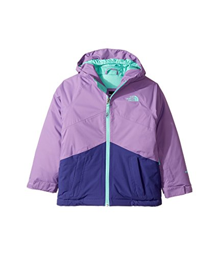 The North Face Girls Brianna Insulated Jacket by The North Face