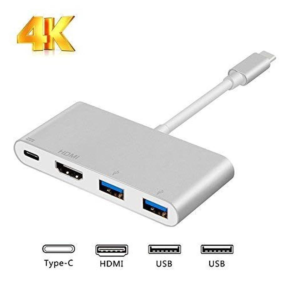 無謀運ぶアニメーションUSB Type C HDMI VGA,CableCreation 2-in-1 USB-C (Thunderbolt 3対応)Type-C to HDMI 4K + VGAアダプタ MacBook / MacBook Pro / Chromebook Pixel / Dell XPS 13 / Surface Book 2 / Yoga 920 / Samsung S8 / HUAWEI Mate 10/Galaxy S9/S9+/HUAWEI Mate 10 Pro/mate 20/mate 20X/mate 20 Pro対応 オス - メス スペースグレー 0.2m