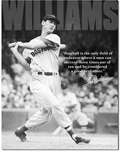 ShopForAllYou Vintage Decor Signs Ted Williams Metal tin Sign MLB Baseball Home Garage Bar Wall Decor New (Pub Mlb Sign)