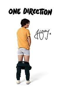 Amazon Com 11 7 X 8 3 One Direction 1d Harry Styles