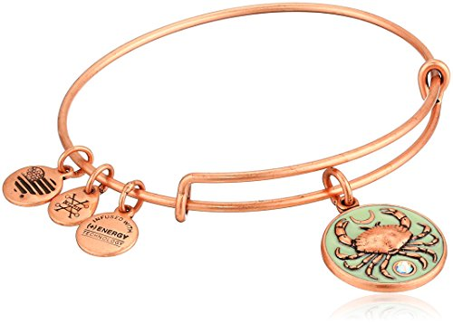 Alex and Ani Women's Color Infusion, Crab Charm Bangle Bracelet, Rafaelian Rose Gold, Expandable by Alex and Ani