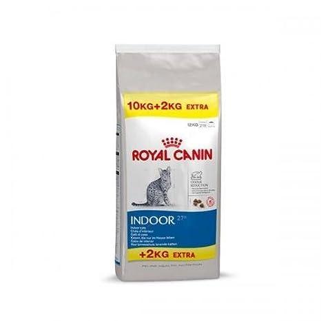 Royal Canin Feline Interior 27 10kg+2kg, Comida Para Gatos, Comida Seca: Amazon.es: Productos para mascotas