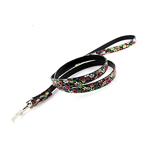 PetFavorites trade; Floral Leather Dog Leash, Perfect for Dog Collar in Pattern A/Pattern B/Pattern C, 4 foot (Floral Leash)