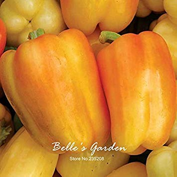 bag.Yellow Pepper.Bonsai Seeds.For The Home Garden.Pot.Balcony. 100 PCs