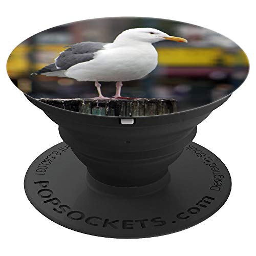 PhotoPops: San Francisco Seagull bird gull - PopSockets Grip and Stand for Phones and Tablets