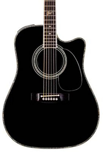 Takamine SW341SC Steve Wariner Signature Dreadnought Acoustic-Electric Guitar Gloss Black ()