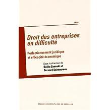 Droit des entreprises en difficulté : Perfectionnement juridique et efficacité économique