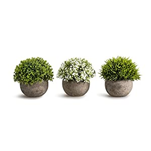 OPPS Artificial Plastic Mini Plants Unique Fake Fresh Green Grass Flower in Gray Pot for Home Décor - Set of 3 106