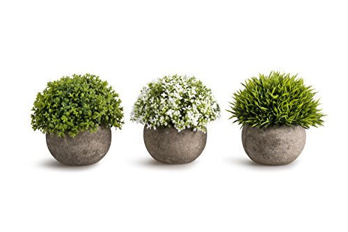 OPPS Artificial Plastic Mini Plants Unique Fake Fresh Green Grass Flower in Gray Pot for Home Décor - Set of 3 (Living Room Mantel Decor)