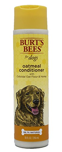 Burt's Bees for Dogs All-Natural Oatmeal Conditioner with Colloidal Oat Flour and Honey | Best Anti-Itch Conditioner For All Dogs And Puppies With Dry Skin