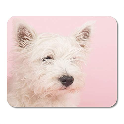 - Semtomn Rectangle Mouse Pad Rubber Mini 9.5