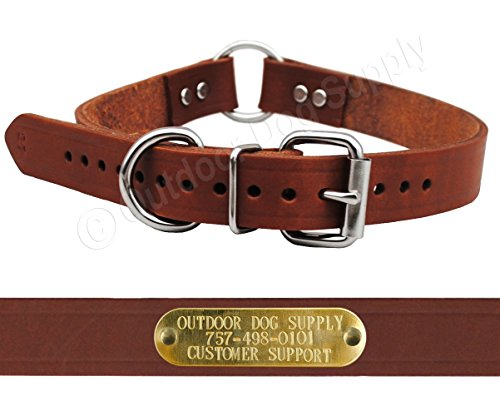 Leather Dog Collar Strap with Custom Brass Name Plate (D Ring & Center Ring, 1