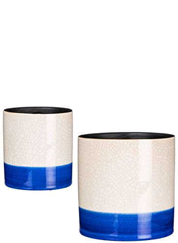 Finish Flower (Sullivans CM2789 Crackle Finish Planter Flower Pots or Storage Container, White and Blue, 5 and 6.5 Inch, Set of 2)