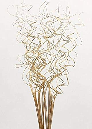 Extra Tall Curly Ting-Ting 3-3.5 ft Tall Light Natural Green Floral Crafts Pack of 35-40 Curly Sticks