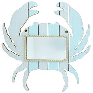 415ga9aYvjL._SS300_ 100+ Coastal Mirrors and Beach Mirrors For 2020