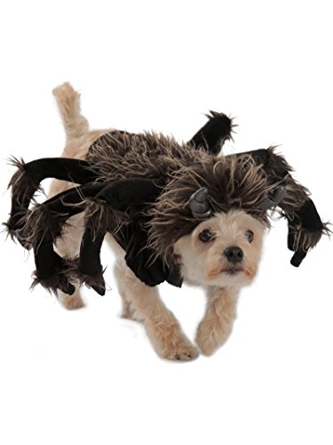 Dog Princess Costumes (Princess Paradise Tarantula Dog Costume, Black, Large)