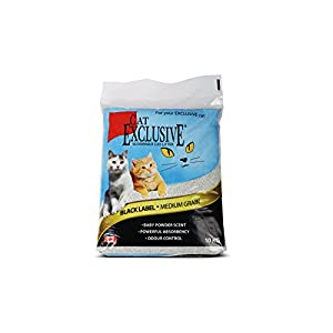 Intersand Cat Scoopable Litter (10 kg) -Pack of 2