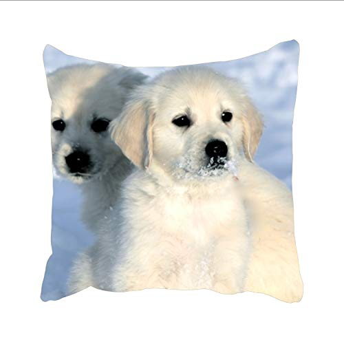 - FunnyLife Custom Unique Design Golden Retriever Dog in The Snow Square Pillowcase one Sides Facial/Skin Care Pillow Covers