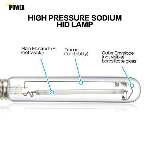 Ipower 600 Watt High Pressure Sodium Hps Grow Light Bulb Lamp High Par Enhanced Red And Orange Spectrums Cct 2100k 2 Pack