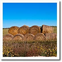 3dRose Danita Delimont - Agriculture - USA, Nebraska, Crawford, Stacked Round Hay Bales - 8x8 Iron on Heat Transfer for White Material (ht_279227_1)