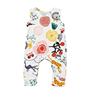Happy kido Newborn Baby Girls Flower Animal Print Romper Bodysuit Outfits Spring Summer Tops (White, 18-24 Months)