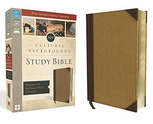 NIV, Cultural Backgrounds Study Bible, Leathersoft, Tan, Red Letter Edition: Bringing to Life the Ancient World of Scripture (Best Looking Offices In The World)