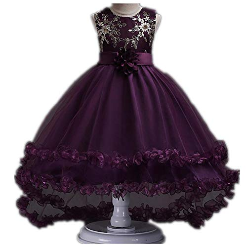 Hanglin Trade Girl Dresses Party Pageant Communion Dress Little Girls Kids/Children Dress for Wedding(Purple 160cm(10-11 -
