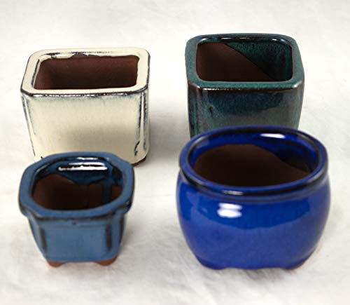 4 Assorted Mini Pots for Mame Shohin Bonsai/Succulent & Accent Plants