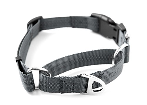 Mighty Paw Martingale Nylon Training Collar. Our...