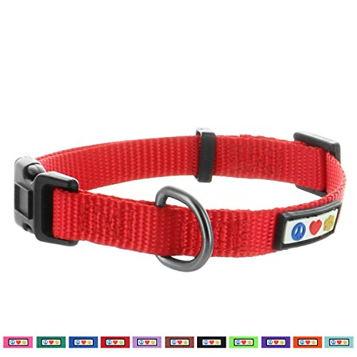 Pawtitas Solid Puppy Collar Pet Collar Training Dog Collar Extra Small Dog Collar Red Dog Collar (Collar Nylon Puppy Dog)