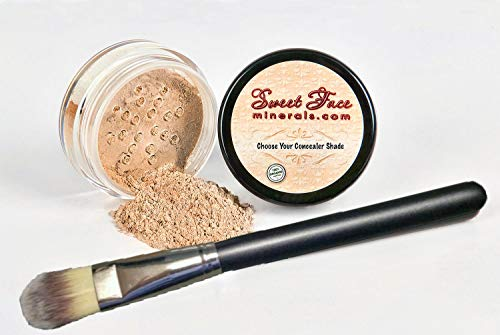 (CONCEALER with BRUSH SET Full Size Mineral Makeup Powder Kit Sheer Bare Skin SPF 20 (Medium)
