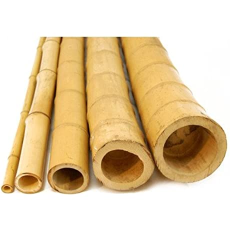 Backyard X Scapes HDD BP07 2in D X 8ft L Bamboo Poles 2 D X 8 H