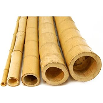 """Backyard X-scapes HDD-BP07 2in. D. x 8ft L Bamboo Poles, 2"""" D x 8' H"""