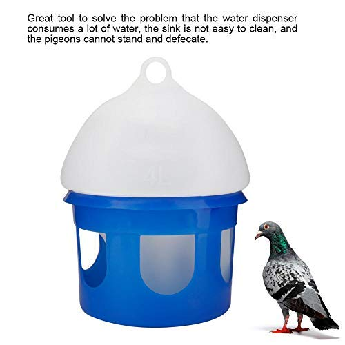 Which is the best pigeon feeders and waterers?