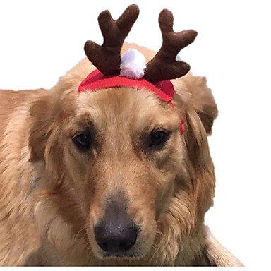 Gato Disfraces Accesorios de Pelo Ropa para Perro Cosplay Navidad Sólido: Amazon.es: Juguetes y juegos