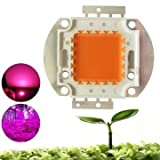 Cob Led Grow Lights - Led Cob Grow Light Bulbs - 100W Full Spectrum 380-840nm Grow Chip for Indoor Plant (Cob Grow Light Full Spectrum)