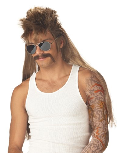 California Costumes Men's Mississippi Mudflap Wig & Moustache,Multi,One Size
