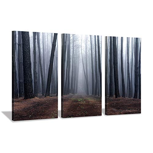 Hardy Gallery Foggy Forest Pictures Wall Art: Mystic Landscape Artwork Pine Trees Painting Print On Canvas for Living Room Bedrooms (26'' x 16'' x 3 Panels)