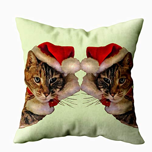 Capsceoll Santa Kitty Lumbar Pillow Decorative Throw Pillow Case 20X20Inch,Home Decoration Pillowcase Zippered Pillow Covers Cushion Cover with Words for Book Lover Worm Sofa Couch