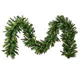 Vickerman Unlit Cashmere Pine Garland with 260 Tips, 9-Feet, Green