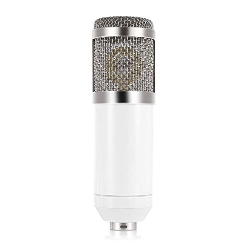 Andoer Condenser Microphone High Sensitivity Recording Studio Professional Recording Equipment White by Andoer