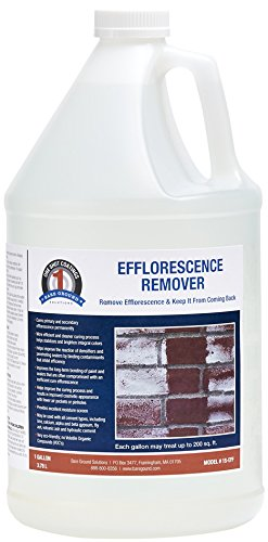 One Shot 1S-EFF Efflorescence (Salt Staining) Remover, 1 Gallon (& Cleaner Brick Patio)
