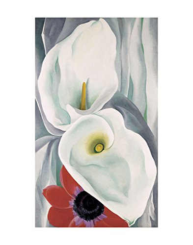 Georgia Okeeffe Calla Lily - McGaw Graphics Calla Lilies with Red Anemone, 1928 by Georgia O'Keeffe Painting Print