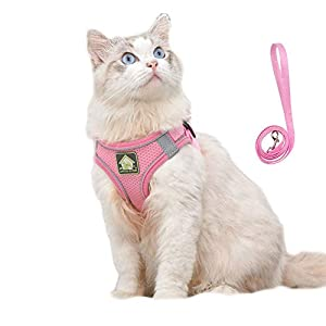 Domkim Soft Mesh No Pull Dog Harness and Leash Set for Small Medium Dogs/Cats, Cat Harness and Leash for Walking Escape…