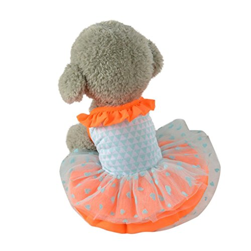 Pet Dress,Haoricu Hot Sale!Summer New Cute Lace Pet Puppy Dress For Small Dogs Dress (M, Orange)