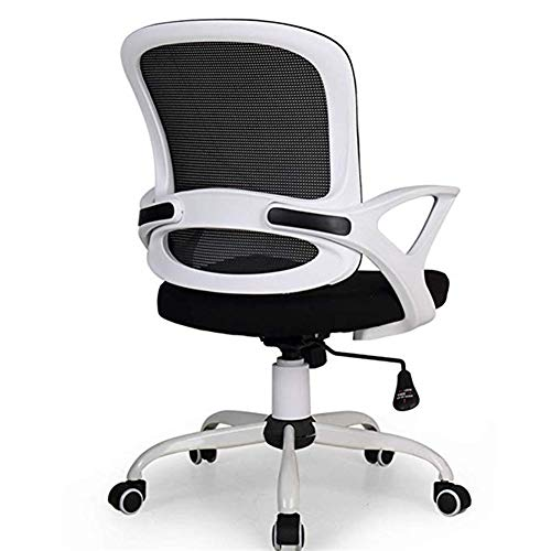 Ace lby Home Computer Chair ,Pulley Mesh Chair ,Office Staff Chair, Lift Swivel Chair ,Office Conference Chair Study Chair ,Reclining Chair Game Chair ()