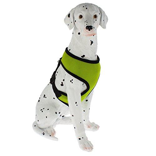 Smartfox Soft Hundegeschirr gespolstert, XLL, grün
