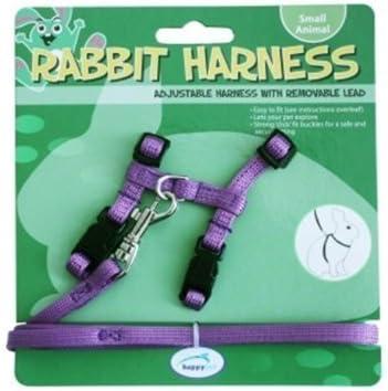purple Rabbit Harness /& Lead Set from happy pet
