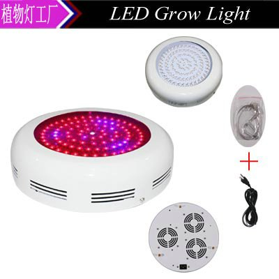 Best 90 Watt Led Grow Light in Florida - 6