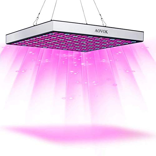 Bestselling Growing Lamps